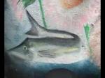 shark selachimorpha